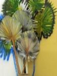 """Palms"" Detail"