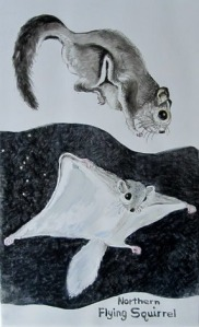 Flying Squirrel Tile by Mary P Williams