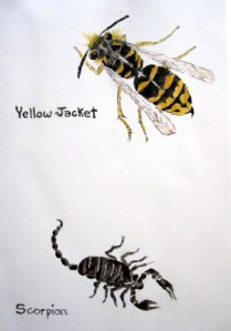 Yellow Jacket and Scorpion Tile by Mary P Williams
