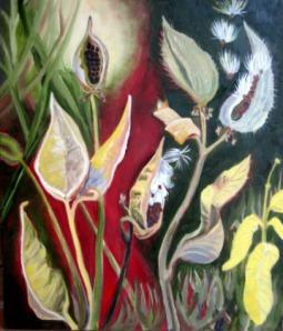 Milkweed by Mary P Williams