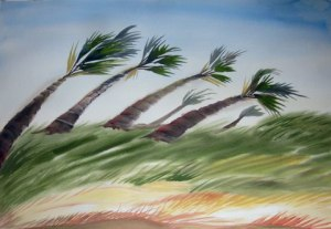 """Texas Palm Trees"" watercolor, 22"" x 30"""
