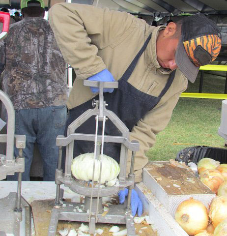 The onion cutter