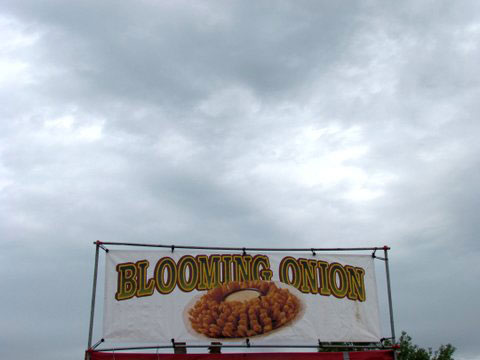 Blooming Onion Sign/Cloudy Day
