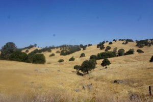 California Golden Hills