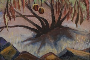 California Buckeye Tree