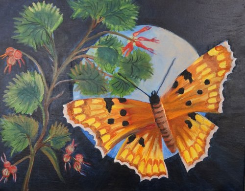 Summer Butterfly and the Moon